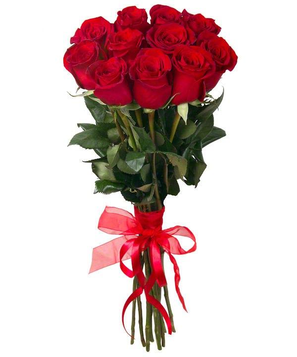 Купить цветы брянске дёшево купить цветы 24